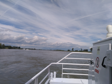 Lower Rhine in summer